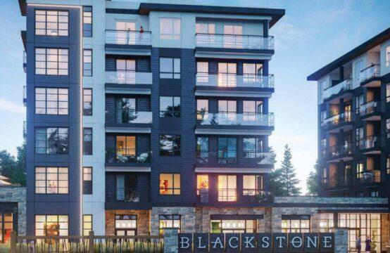 Ro at Blackstone Condominiums